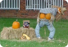 pumpkinbutts
