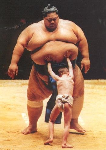 Sumo wrestlers  Google Images